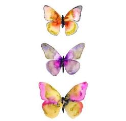 butterfly watercolor mariposa